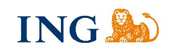 Logo Banku dla konta ING konto firmowe – Konto Direct dla firm